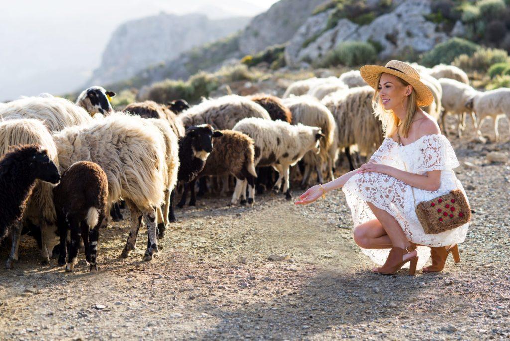 modelka w grecji wśród owiec w górach