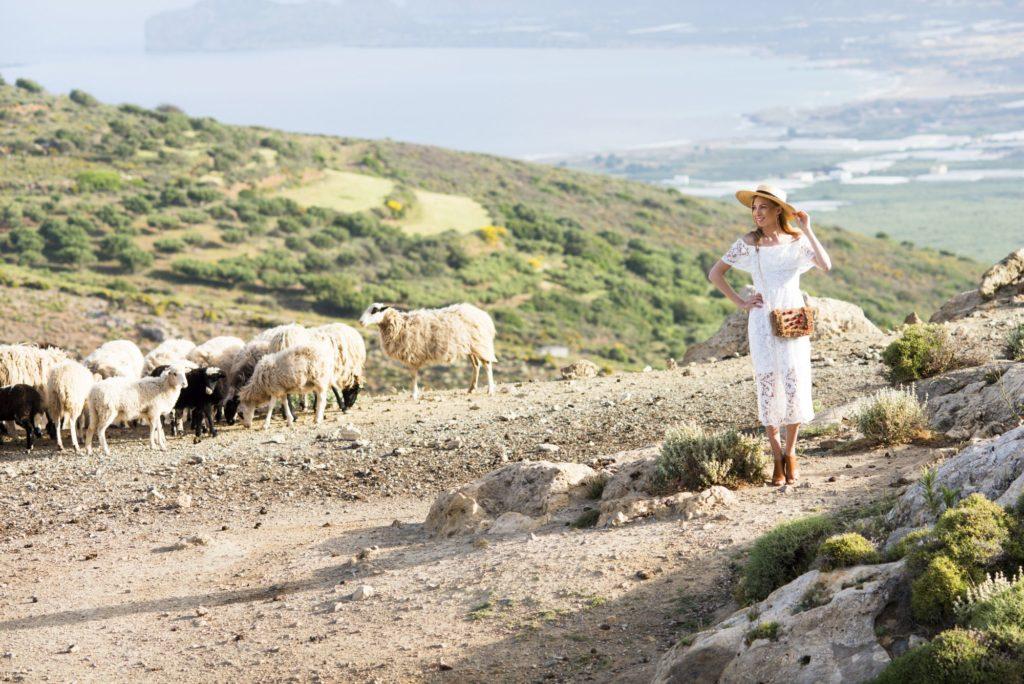modelka w kapeluszu kanotier i owce